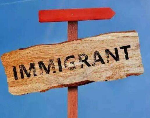 留学移民新西兰哪个专业回报率最高?